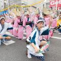 9/23日(日)のんき連!!(阿波おどり振興協会)